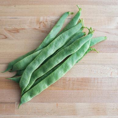 Jumbo Bush Beans