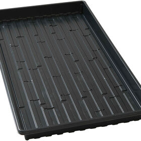 Shallow Black Germination Trays - Pack of 5 Trays Domes and Flats