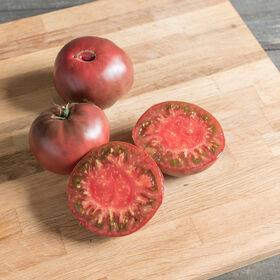 切罗基紫色祖传番茄