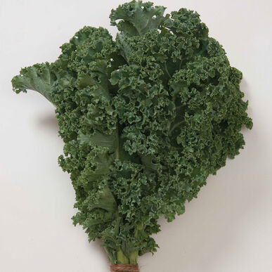 how to cut back kale winter