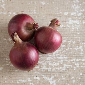 Redwing Full-Size Onions