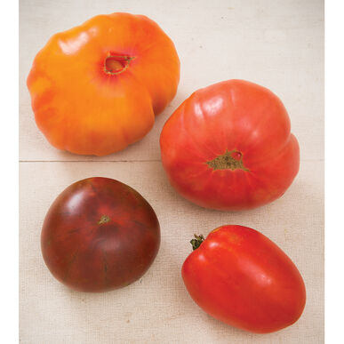 Heirloom Tomato Collection Heirloom Tomatoes