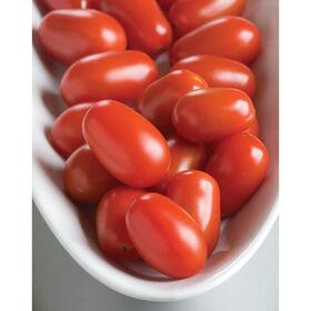 五星葡萄西红柿