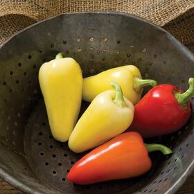 Havasu Hot Peppers