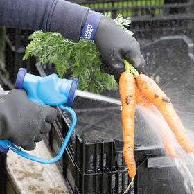 寒冷的天气站手套洗米收获后