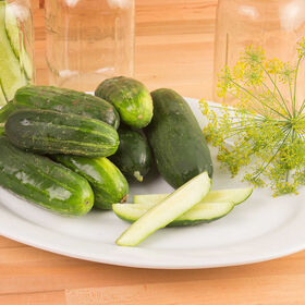 Max Pack Pickling Cucumbers