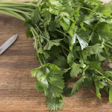 Cutting Celery Cutting Celery