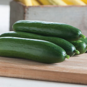 Diva Seedless and Thin-skinned Cucumbers