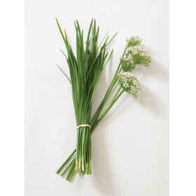 Chinese Leeks/Garlic Chives