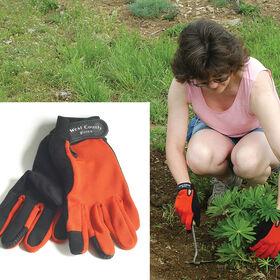 女性的砖,手套