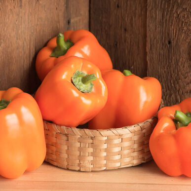 Milena Sweet Bell Peppers