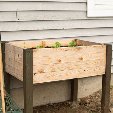 Elevated Garden Bed Raised Garden Beds