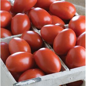 Granadero粘贴西红柿