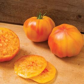 Margold牛排西红柿