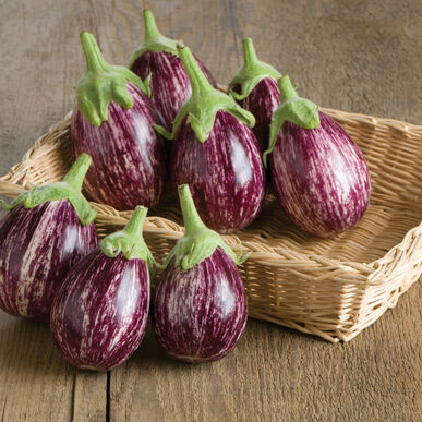 Calliope Asian Eggplants