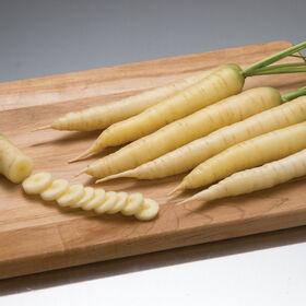 白色缎主要作物胡萝卜