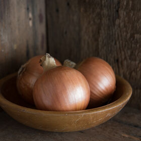 New York Early Full-Size Onions