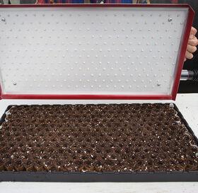 Seed Plate A264 Vacuum