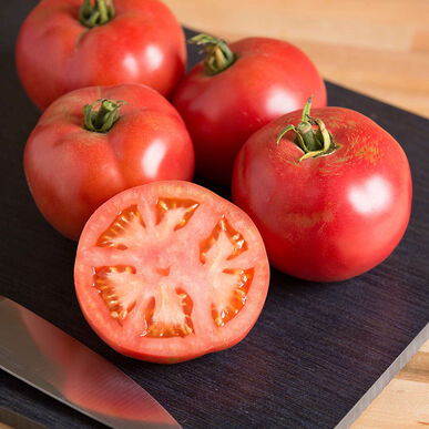 Pink Beauty Specialty Tomatoes