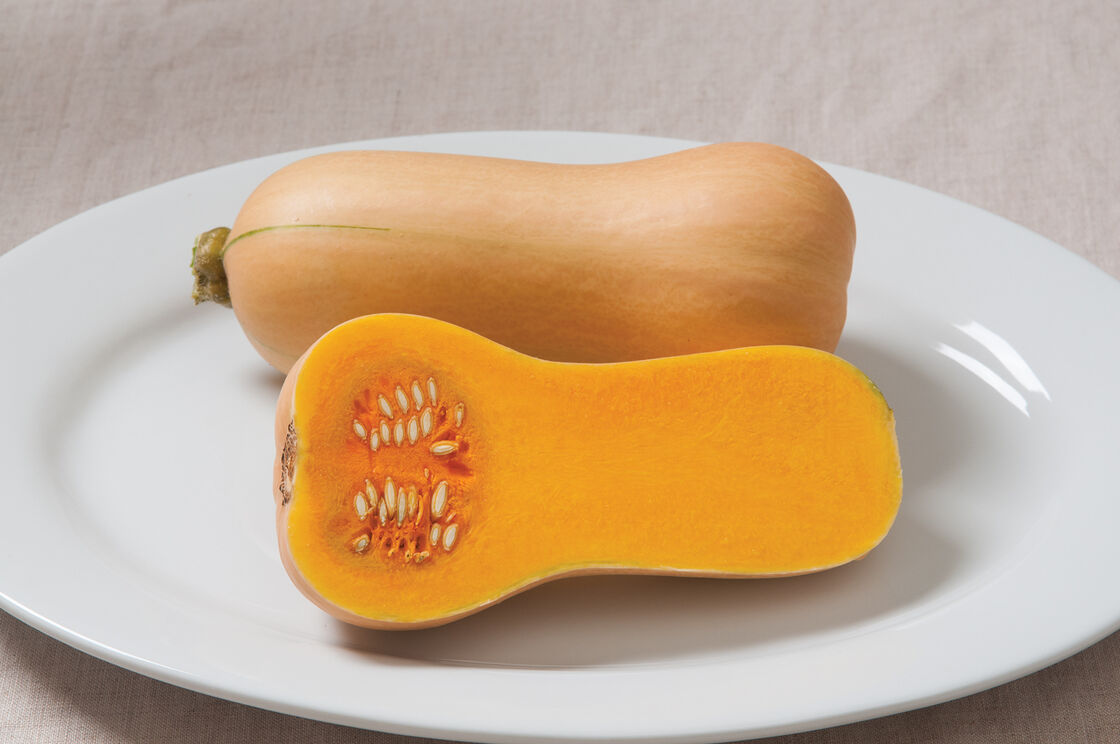 Image Result For Id Butternut