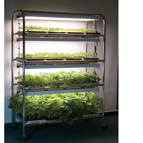 Full-Size Seedling Light Cart - 4 shelves, 640 Watts Grow Lights and Carts