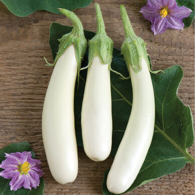 Gretel Mini Eggplants