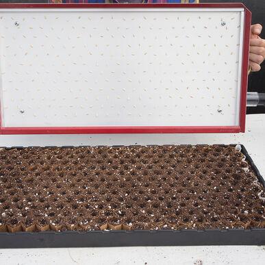 Seed Plate E264 Vacuum