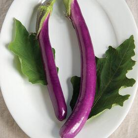 Machiaw亚洲茄子