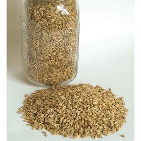 大麦(强大)大麦
