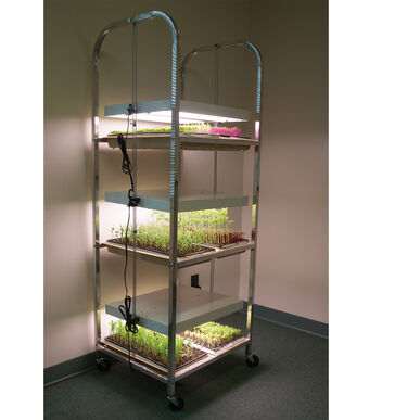Compact Seedling Light Cart – 6 Trays, 240 Watts Grow Lights and Carts
