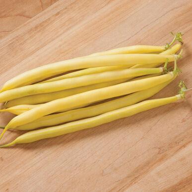 Carson Bush Beans