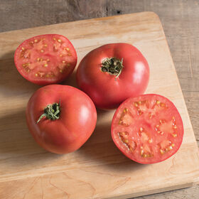 Damsel Specialty Tomatoes