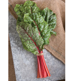 Ruby Red or Rhubarb Chard