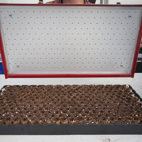 Seed Plate D264 Vacuum