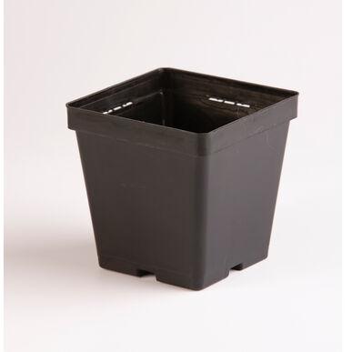 Maxi Square Plastic Pots – 540 Count Containers