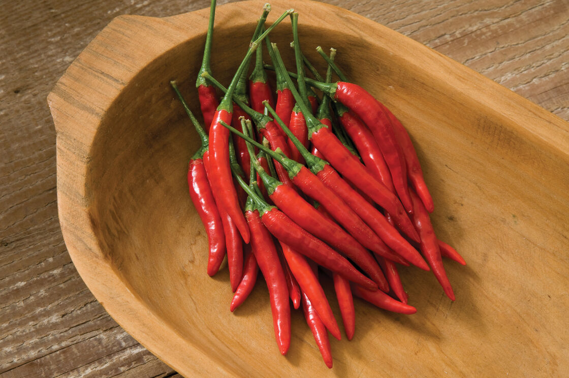 chilli peppers and the southeast asian identity They tend to eat lots of chili peppers chili choker:  who were among the first to colonize southeast asia  asian people who try to act black and use the.