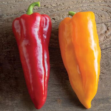 Corno di Toros Sweet Peppers