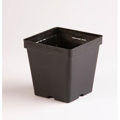 Maxi Square Plastic Pots – 18 Count Containers