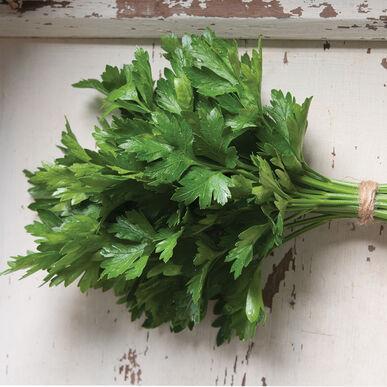 Fidelio Leaf Parsley