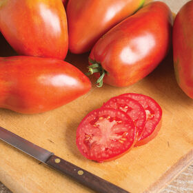Blue Beech Heirloom Tomatoes