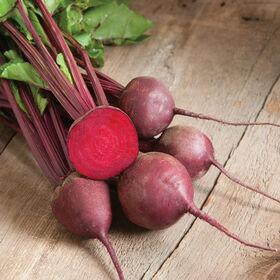 红色的王牌圆的甜菜