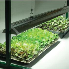 Value Jump Start Grow Light System - 2 Ft. Grow Lights and Carts