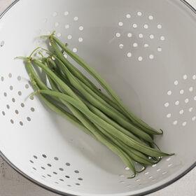 Maxibel Bush Beans