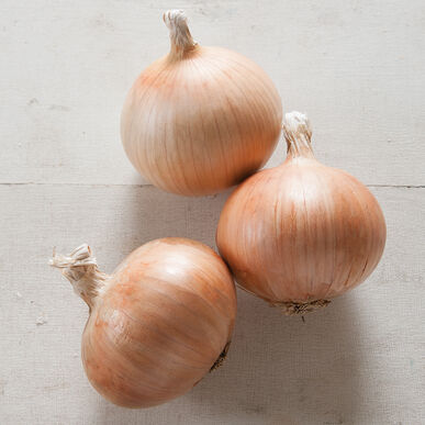 Zoey Full-Size Onions