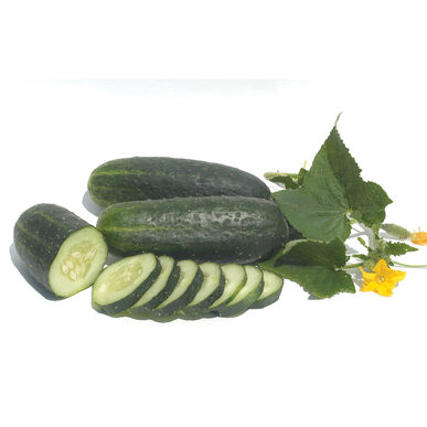 Vertina Pickling Cucumbers