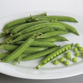 Penelope Shelling Peas