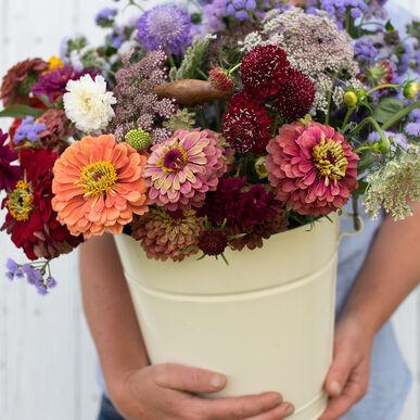 Easy Cut-Flower Garden Set Sets