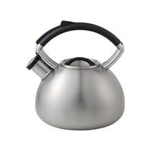 Brushed Stainless Steel Tea Kettle