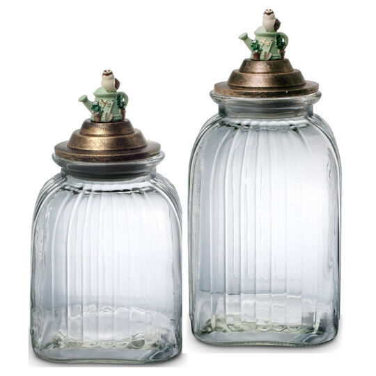 Set of 2 Glass Canisters with Resin Lid