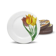 Tulips Set of 4 Salad Plates